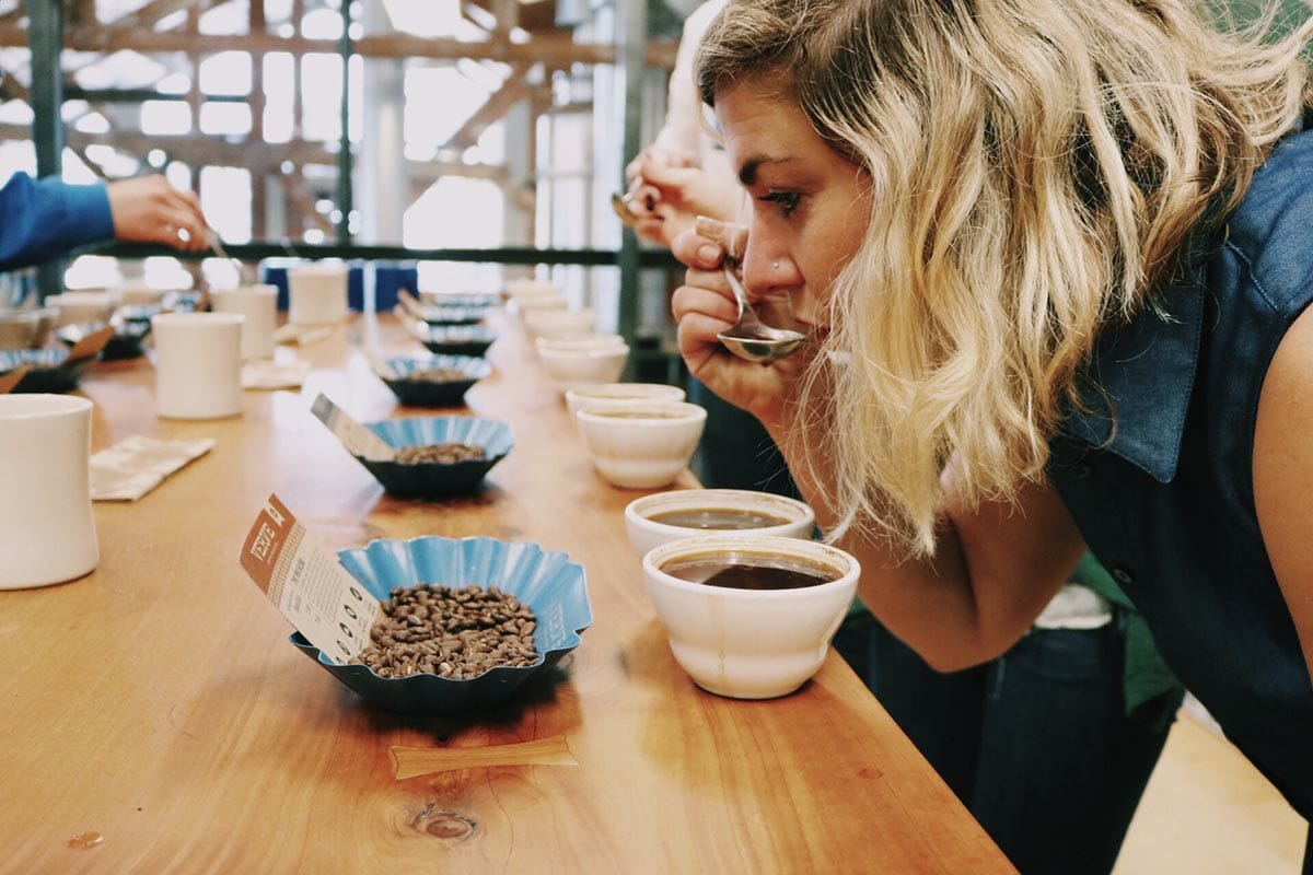 Cupping coffee tasting