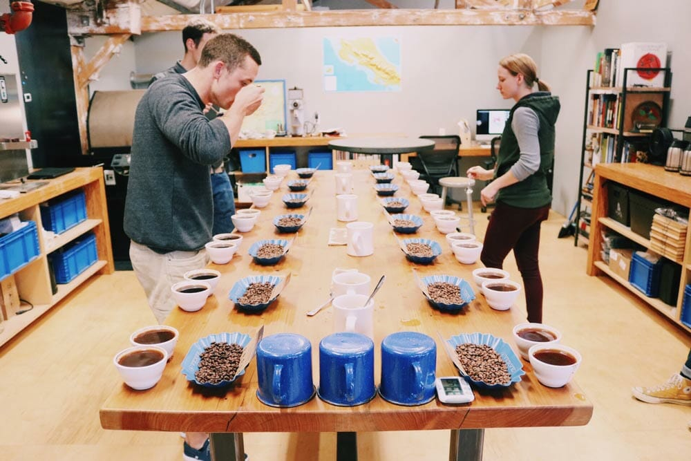 cupping-coffee