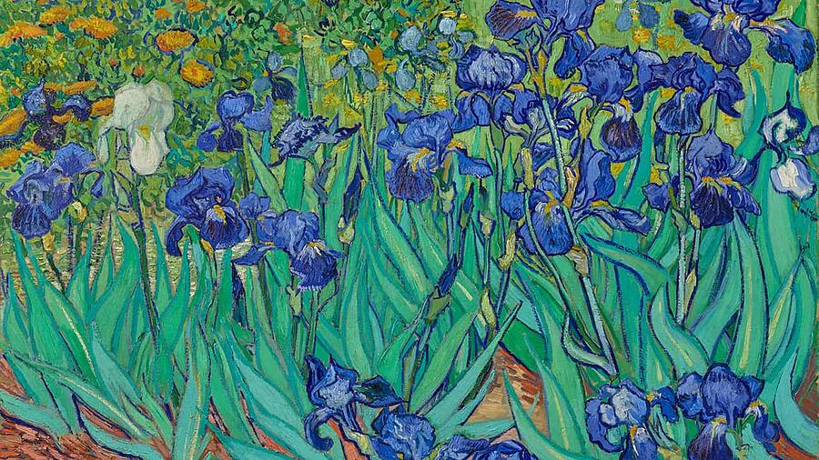 Van Gogh Zoom background offered by the Getty
