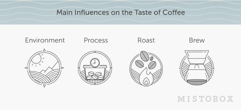 influences on the taste of coffee
